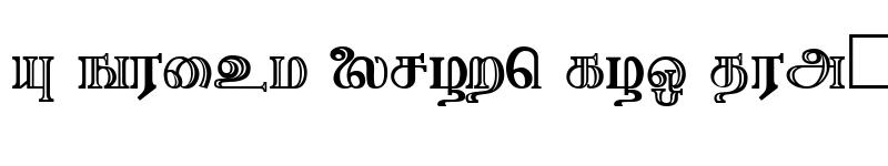 Preview of Needhimathi Regular