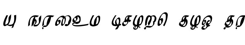 Preview of SM-Tamil-01 Regular